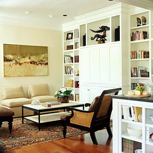 basement--wall unit, books, ceiling