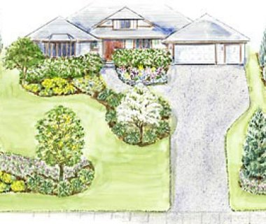 a large, welcoming front yard landscape plan