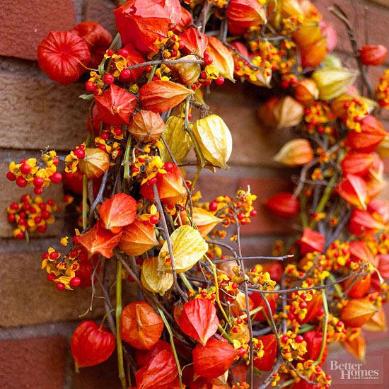 Bright Bittersweet Wreath
