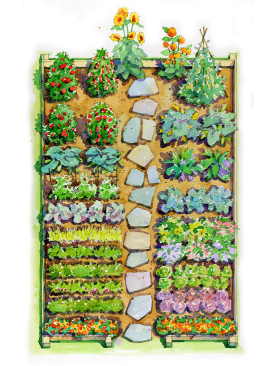 Best Garden Plot Design