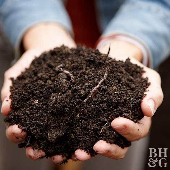 Compost, dirt, worms, garden, gardening