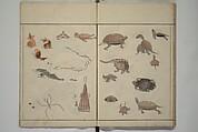 Kuwagata Keisai | How to Draw Birds, Insects and Fish Simply (Ch\u014dj\u016b ryakugashiki ...