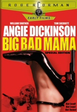 DVD cover art for Big Bad Mama