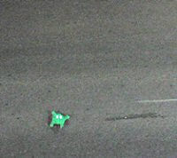 Roomba Frogger as seen from above