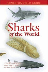 Sharks of the World book cover art