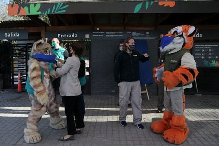 """Wanted: Animal Godparents For Chilean Zoo In """"Bleak"""" Year"""