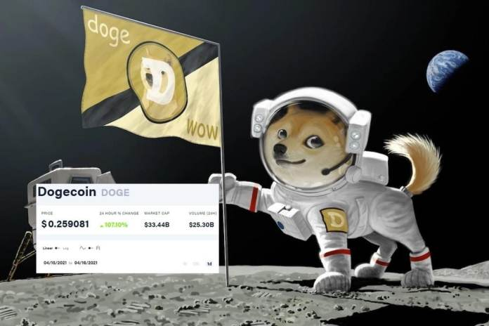 Dogecoin Cryptocurrency Records Biggest Jump in a Day, Thanks to Elon Musk  and Memes
