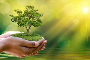 This Earth Day, Promises to Save the Planet by Doing These Things