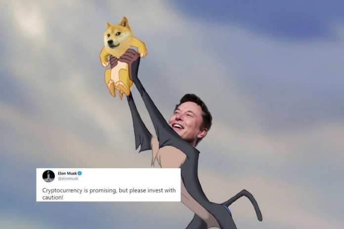 Elon Musk's 'Indeed' Tweet Led to Another Drop in Bitcoin Prices and Rise  in Memes