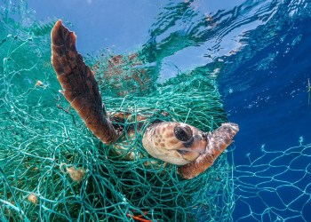 Huge amounts of abandoned fishing gear litter the world's oceans