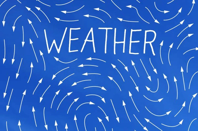 Jenny Offill's sharp new novel Weather examines individual anxieties about the climate emergency.
