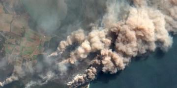 Australia bush fires burned a globally unprecedented area of forest