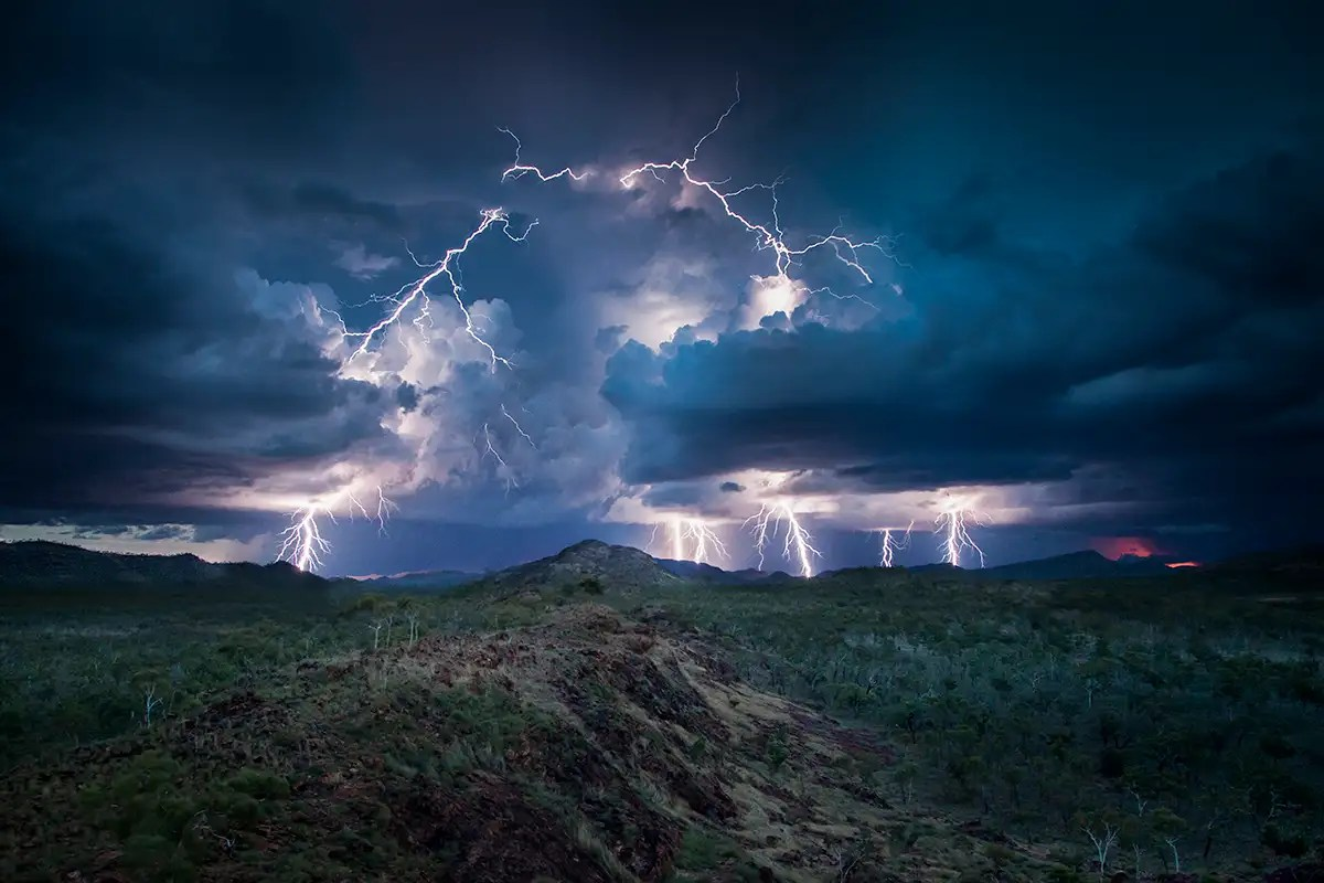 Lightning is killing our forests  and it's only going to get worse