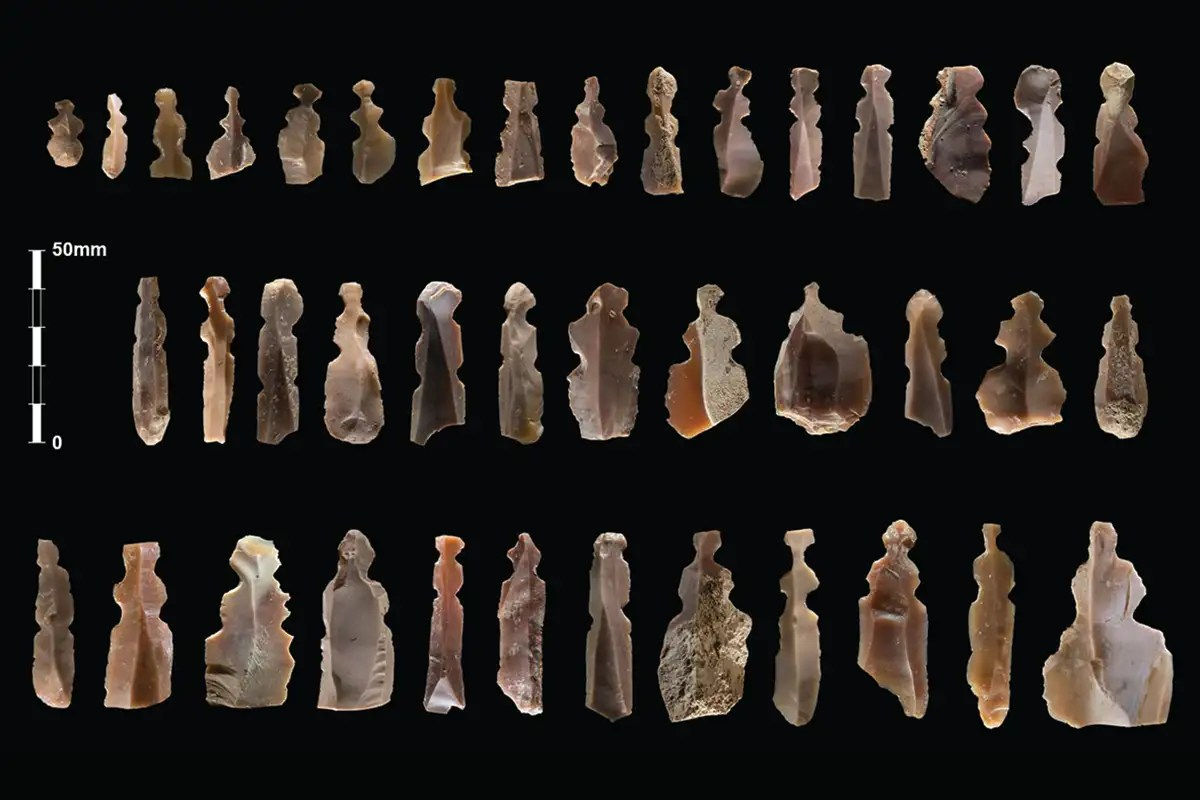 Mysterious Stone Age flint artefacts may be crude sculptures of humans