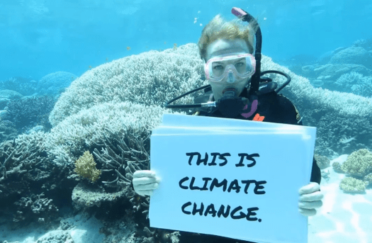 How climate change impacts the Great Barrier Reef tourism industry | New Scientist