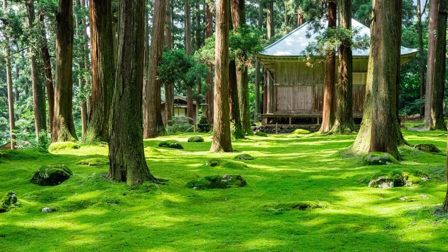 Heisenji Hakusan Shrine (Fukui)