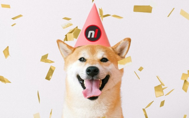 Nintendo Life Birthday Doggo!