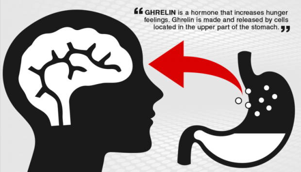 Image result for ghrelin