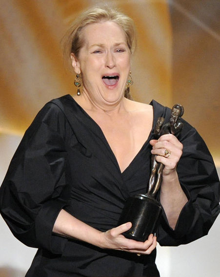 Meryl Streep will go up against Helen Mirren and Leonardo DiCaprio in the Global Contribution to Motion Picture category