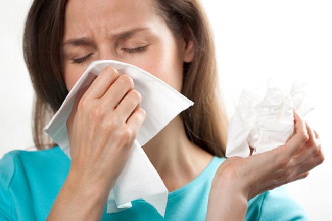 नाक की एलर्जी