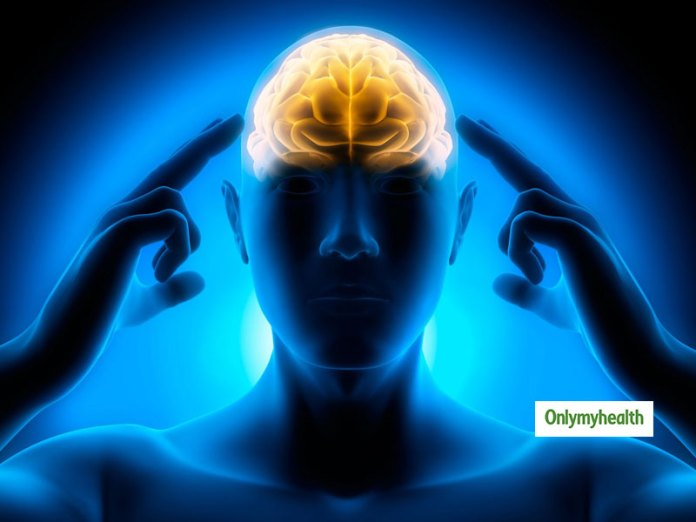 Nutrition For Brain Health And Cognitive Performance: Top 5 Nutrients To Improve Memory