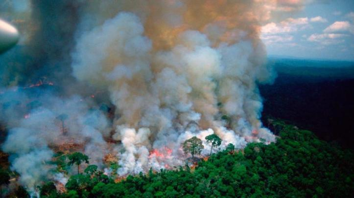 Resultado de imagen para amazonas se incendia