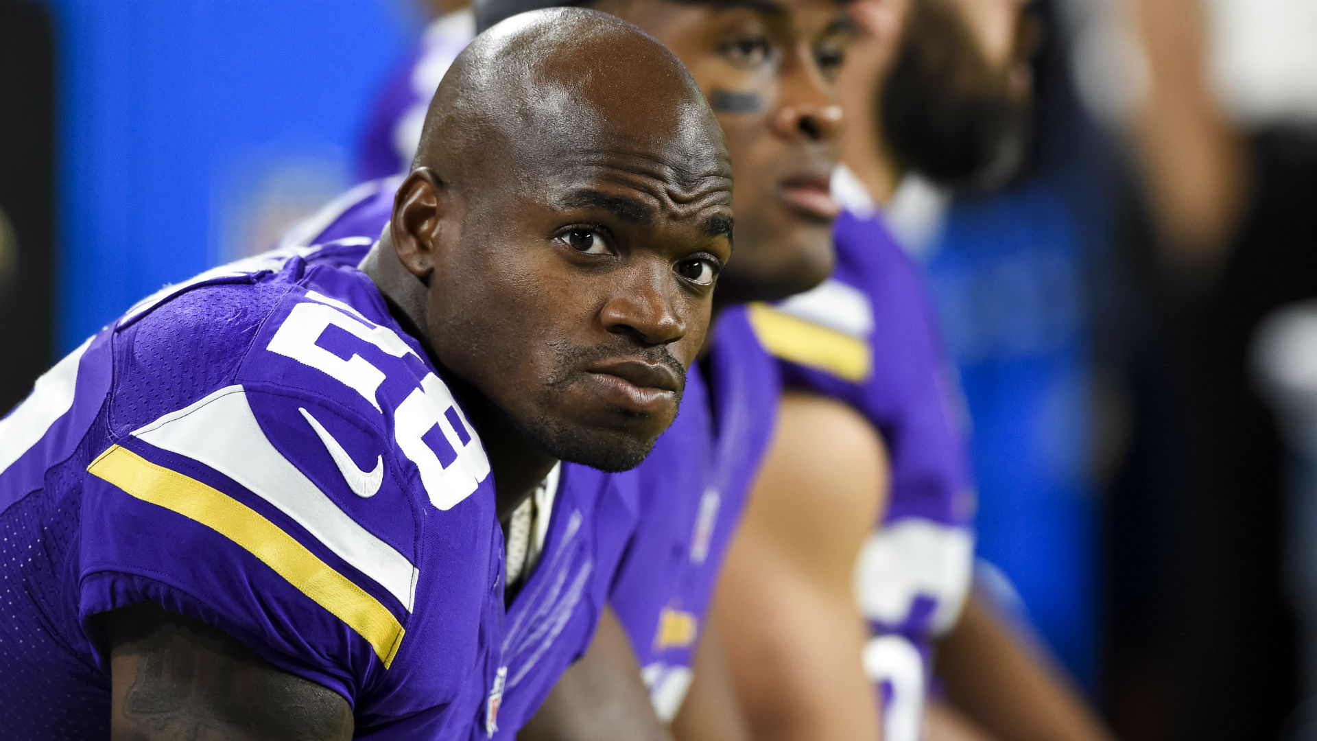 Image result for adrien peterson 2017