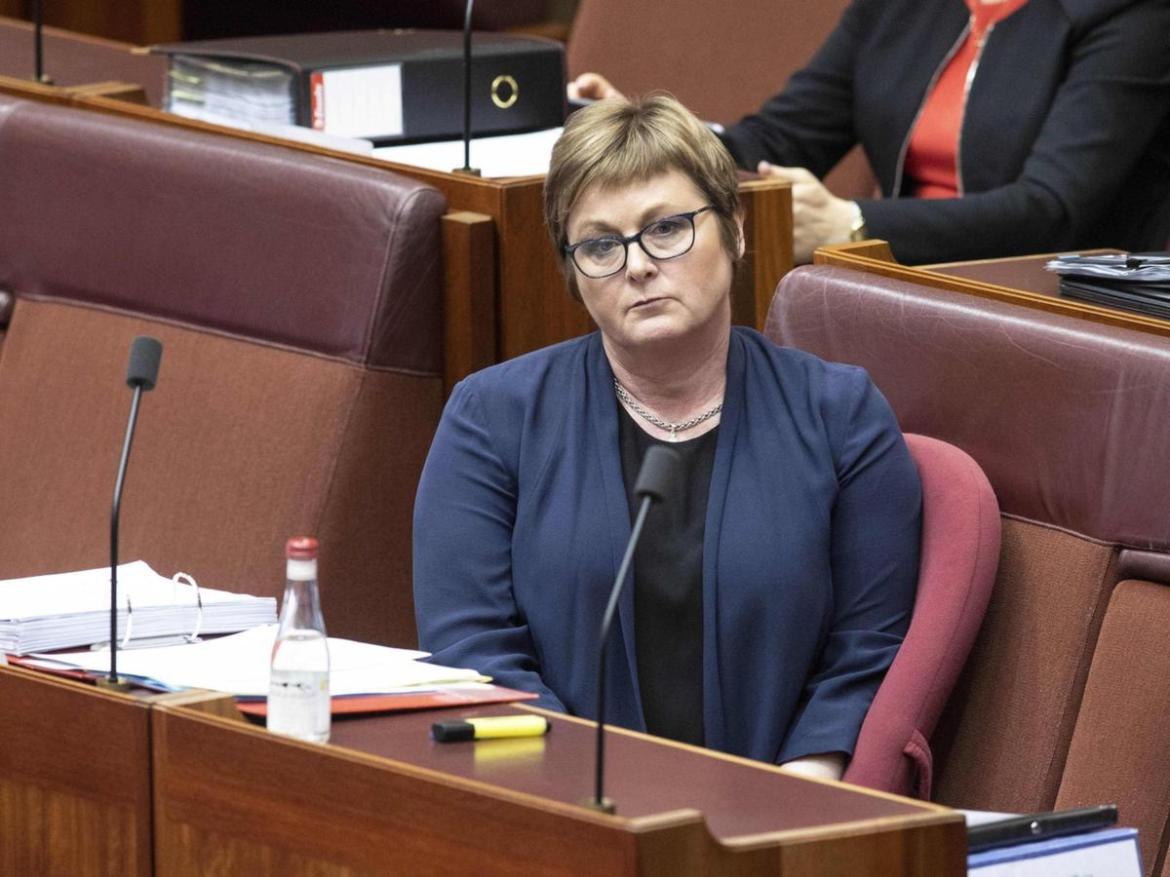 Senator Linda Reynolds told the Senate she was 'extremely concerned' about the wellbeing of Ms Higgins.