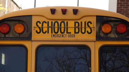 back, bus, education