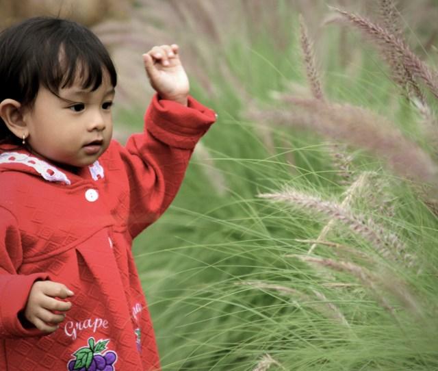 Free Stock Photo Of Asia Children Cute