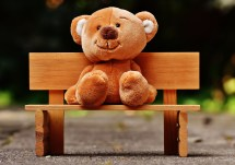 Free stock photo of wood, bench, cute, blur