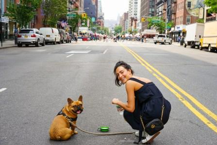 Una Donna In Abito Blu E Il Suo Pug Marrone