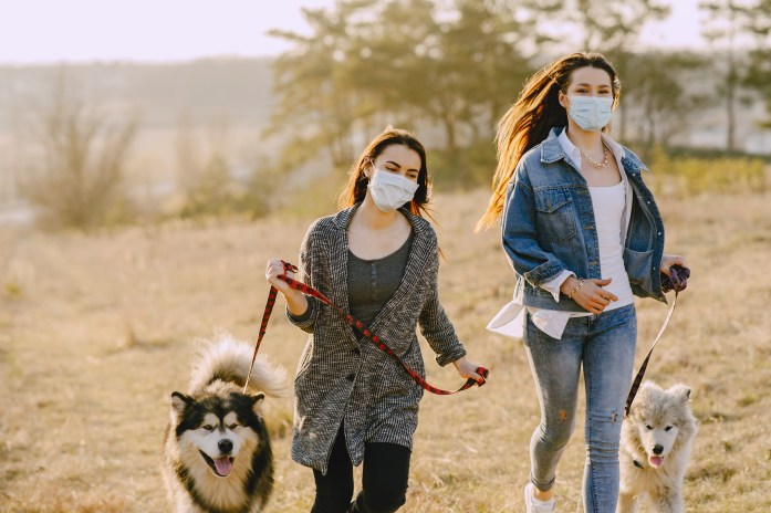Photo of Women Wearing Face Masks While Running With Their Dogs