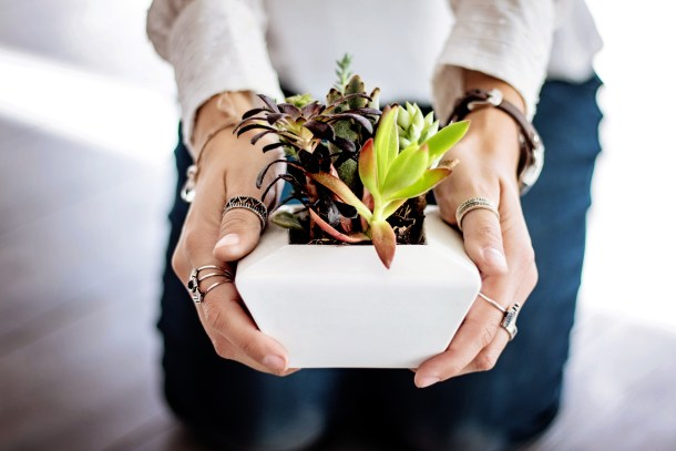 woman holding a pot with succulents