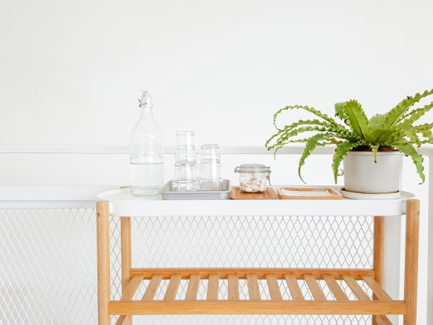 house plant in white kitchen area