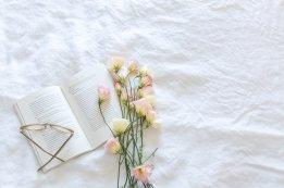 Photos gratuites de couverture, fleur, fleurir