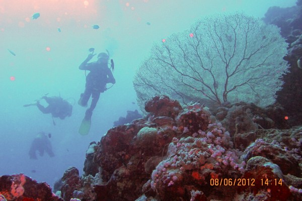 Scuba diving in the Red Sea is one of the attractions of Jeddah. Source: Flickr