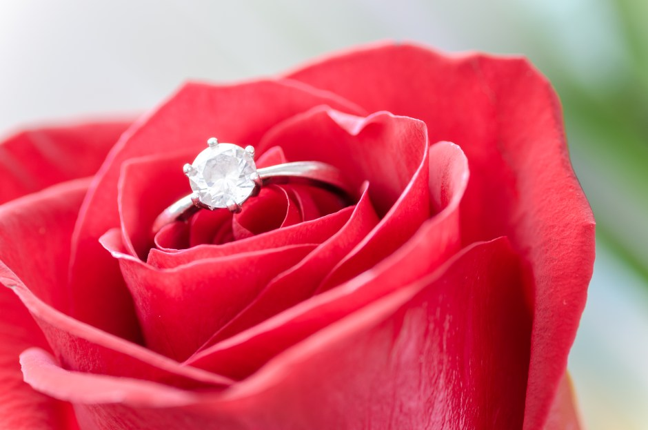 Silver Diamond Embed Ring on Red Rose don't do it
