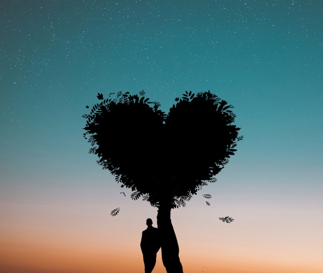 Silhouette Photo Of Man Leaning On Heart Leaf Shape Tree During Dawn