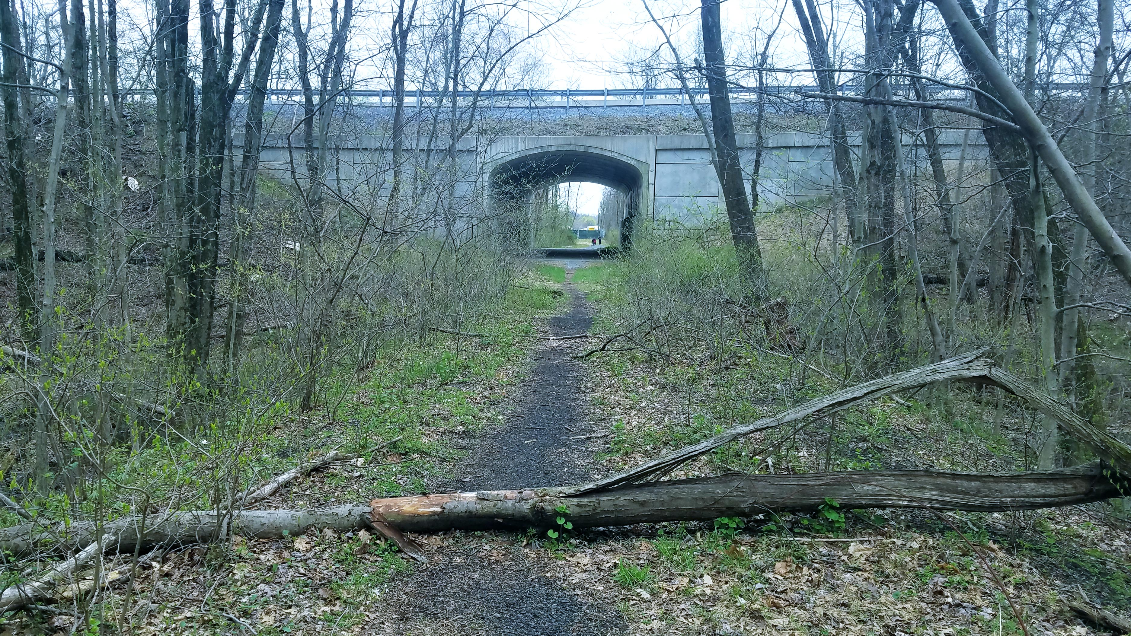 Rails to Trails moves forward with planned Jonestown-Lickdale expansion