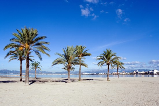 zeitig am strand von palma de mallorca