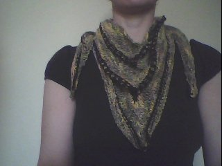 Webcam Shot, Scarf