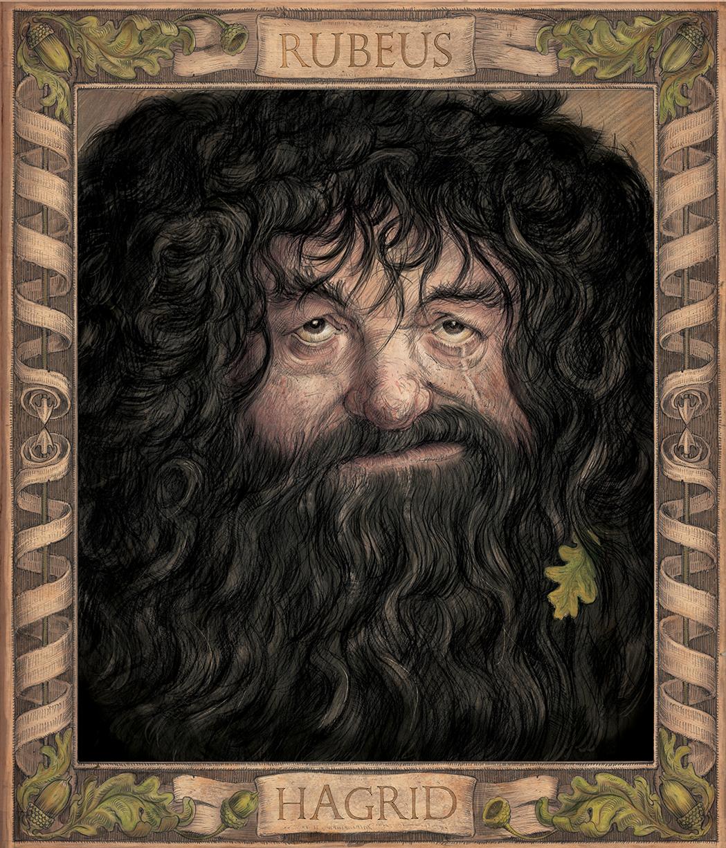 Chamber of Secrets illustrated edition Hagrid Jim Kay