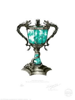 The Triwizard Cup, featured in Harry Potter and the Goblet of Fire
