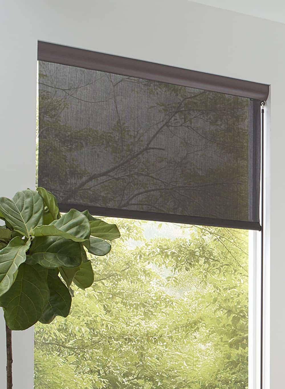 are outdoor shades right for you the