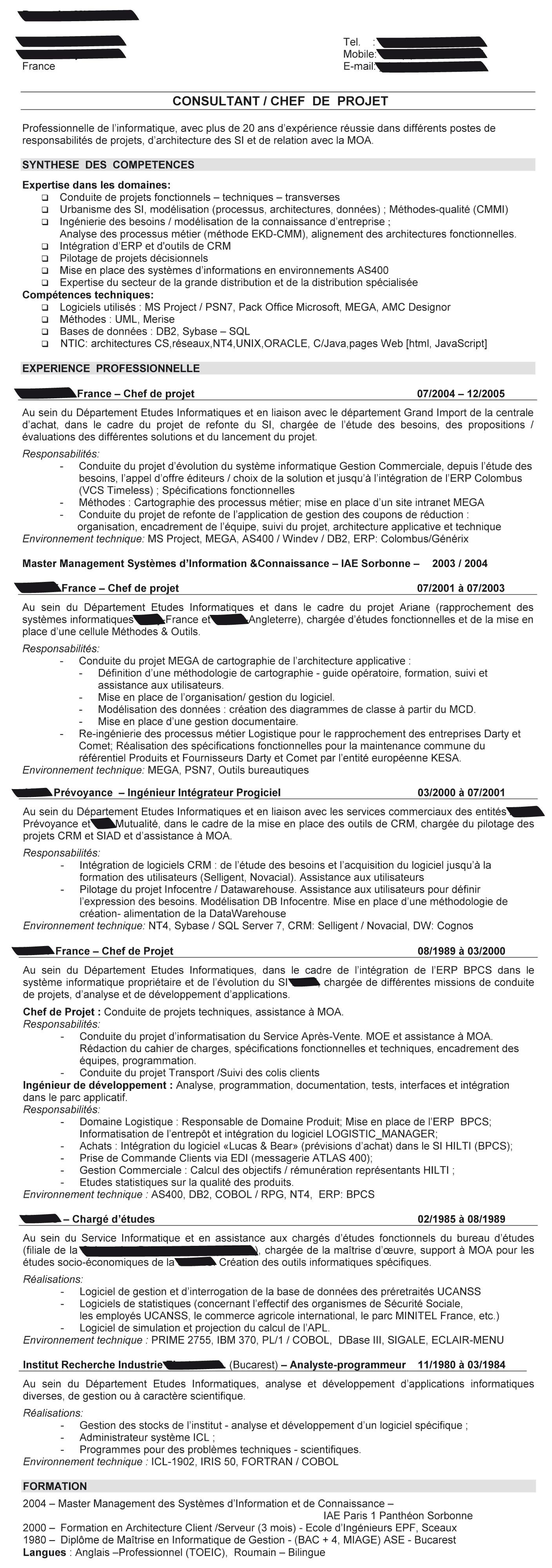 Cv Consultant Informatique Cadremploi