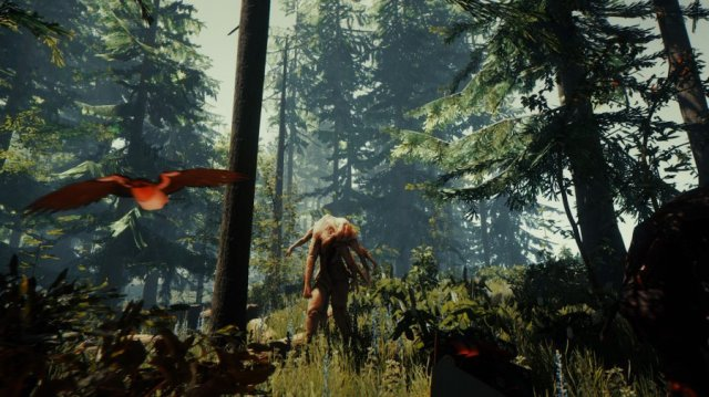 The Forest Review - Screenshot 2 of 3