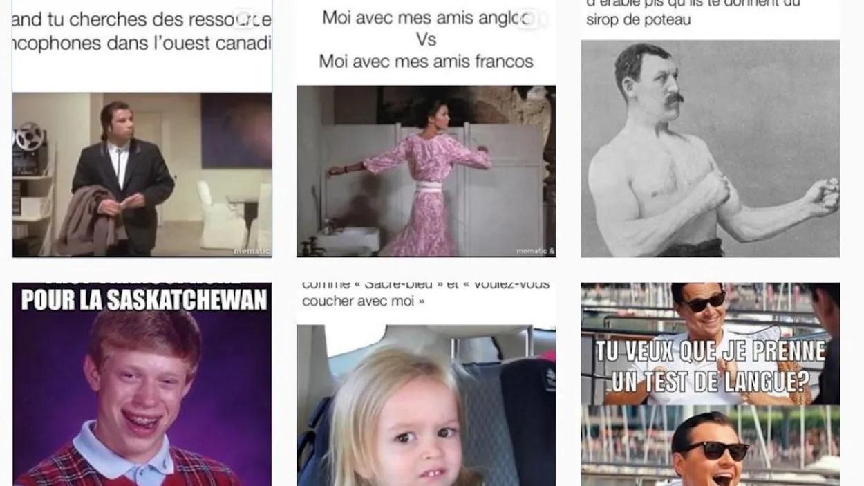 Des Memes En Francais En Milieu Minoritaire Font Fureur Sur