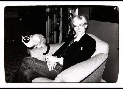like a rolling stone meaning andy warhol