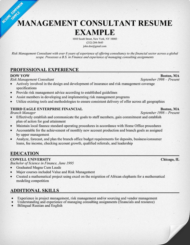 Management Consulting Resume Words. Free Cv Sample Senior